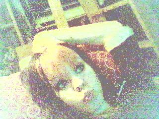(Wow, bra webcamera..) Mørkebrunt, nesten svart hår, og rosa lugg. Den ser lyserød ut her, men den var rosa, altså!